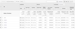 Google Analytics Demographic Report