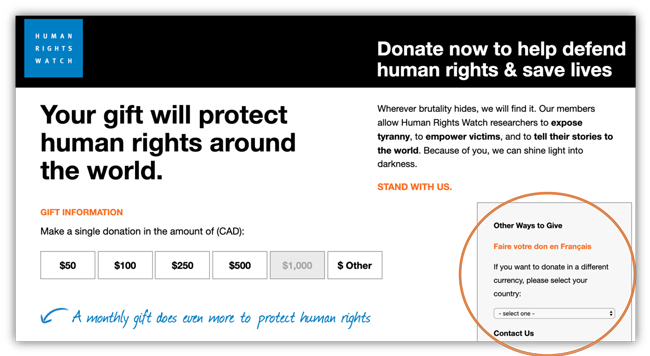 human rights watch donation form
