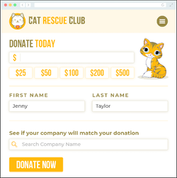 example of how the 360MatchPro displays in a donation form.
